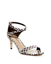 Via Spiga | Multicolor Leesa 2 Sandal | Lyst