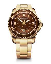 Victorinox - Brown Men's Maverick Gs Two Tone Bracelet Watch, 43mm for Men - Lyst