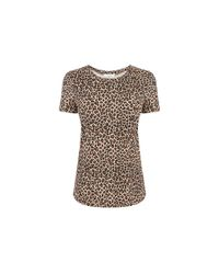 Oasis - Multicolor Animal Print Tee - Lyst
