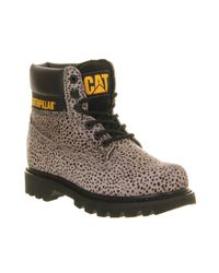 Caterpillar | Gray Colorado Boots for Men | Lyst