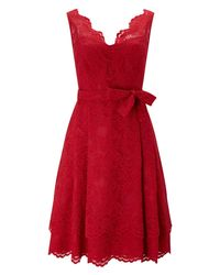 Phase Eight - Multicolor Milly Lace Dress - Lyst