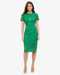 Phase Eight - Green Darena Lace Dress - Lyst