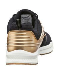 PUMA Multicolor Ignite Xt V2 Gold Women's Training Shoes