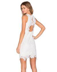 Bardot | White Rosette Lace Dress | Lyst