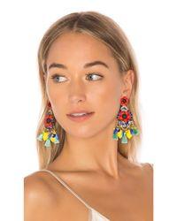 Elizabeth Cole - Multicolor Zaya Earrings - Lyst