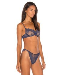 Only Hearts - Blue So Fine Lace Underwire Bra - Lyst
