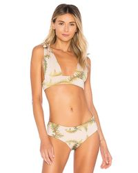 Cali Dreaming - Multicolor Gaia Bikini Top - Lyst