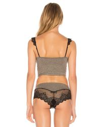 Only Hearts - Black So Fine Lace Crop Cami - Lyst