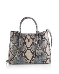 Prada | Gray Small Python Double Bag | Lyst