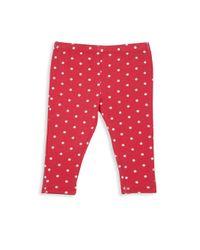 Splendid - Red Babys Dotted Leggings - Lyst