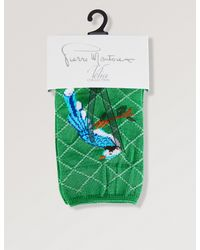 Pierre Mantoux - Green Donald Bird-pattern Socks for Men - Lyst