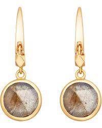 Astley Clarke - Metallic Stilla 18ct Gold-plated Labradorite Earrings - Lyst