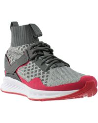 2ce81c5d3a9c Lyst - PUMA X Staple Ignite Evoknit X Staple Ignite Evoknit in Gray ...