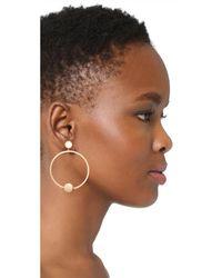 Shashi | Metallic Tiffany Hoop Earrings | Lyst