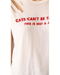 Wildfox - Pink Cats Can't Be Trusted Thrashed No9 Tee - Lyst