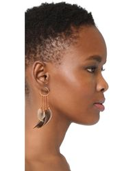 Serefina - Multicolor Statement Feather Hoop Earrings - Lyst