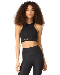 Beyond Yoga | Black Knit Down Studio Bralette | Lyst
