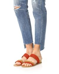 Dolce Vita - Red Pacer Sandals - Lyst