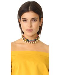 Erickson Beamon | Multicolor Imitation Pearl Safari Choker | Lyst