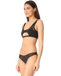 Kopper & Zink - Black Tessa Bikini Top - Lyst
