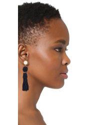Lizzie Fortunato   Multicolor Havana Earrings   Lyst