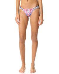 Pilyq | Multicolor Fanned Bikini Bottoms | Lyst