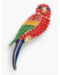 Talbots - Multicolor Parrot Pin - Lyst