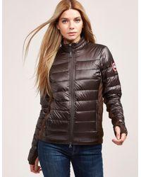 Canada Goose - Womens Hybridge Lite Padded Jacket Brown - Lyst