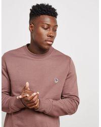 PS by Paul Smith - Mens Zebra Crew Sweatshirt Pink for Men - Lyst