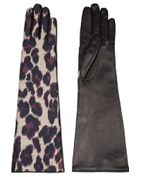 Lanvin | Black Leopard-print Twill And Leather Gloves | Lyst