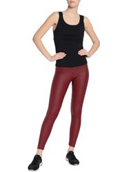 Yummie By Heather Thomson Red Leggings