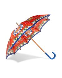 Dolce & Gabbana - Blue Printed Twill Umbrella - Lyst