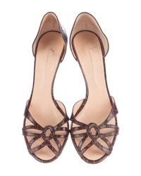 Giuseppe Zanotti - Brown Embossed D'orsay Pumps - Lyst