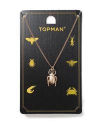 Topman | Metallic Gold Beetle Necklace for Men | Lyst