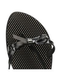 Zaxy - Womens Black Fresh Bow Flip Flops Women's Flip Flops / Sandals (shoes) In Black - Lyst