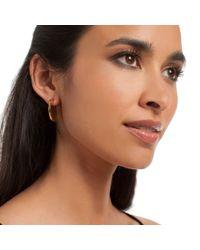 Trina Turk - Multicolor Flat Circle Hoop Earring - Lyst