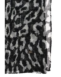 Saint Laurent - Black 'animal Print' Scarf - Lyst