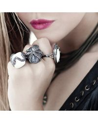 Bellus Domina - Gray Octopus Cocktail Ring - Lyst