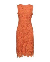 Alberta Ferretti Orange Knee-length Dress