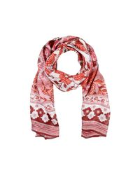 Roberto Cavalli - Red Scarf - Lyst