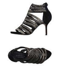 Carvela Kurt Geiger - Black Sandals - Lyst