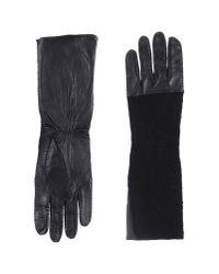 Twin Set | Black Gloves | Lyst