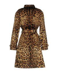 Dolce & Gabbana - Brown Overcoat - Lyst