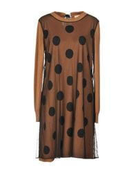 Scee By Twin-set - Brown Short Dress - Lyst