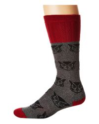 Socksmith Multicolor Owl (charcoal) Men's Crew Cut Socks Shoes for men