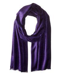 Calvin Klein | Purple Ck Logo Pashmina | Lyst