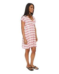 Carve Designs - Pink Coco Dress - Lyst