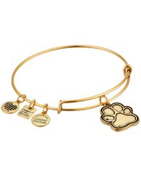 ALEX AND ANI | Metallic Charity By Design - Prints Of Love Bracelet | Lyst