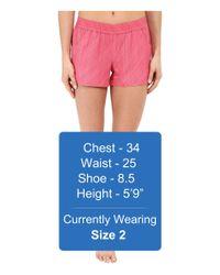 Carve Designs - Pink Surfs Up Shorts - Lyst