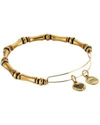 ALEX AND ANI | Metallic Jordan Beaded Expandable Bangle | Lyst